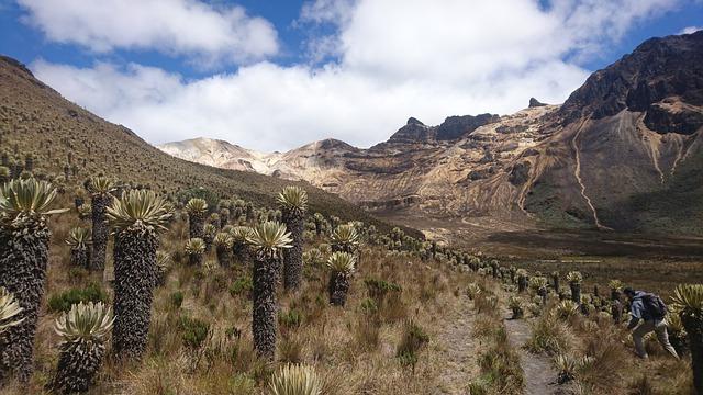 Parque-Nacional-Colombia